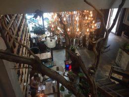 Lektion i kinesiska på café i Chengde